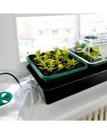 "Propagator ""Hollandia"" - Electric Window Sill Propagator"