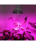 "Lampe LED horticole ""Super Grow"""