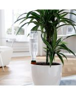 """Balcony Plant Watering System """"Hydro Classic"""""""