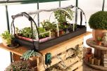 "Propagator XXL ""Jumbo"" with Heating Mat & Digital-Thermostat"