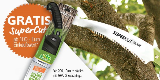 Supercut Angebot