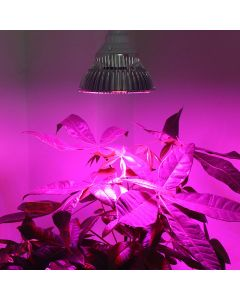"LED Growing Lamp ""Super Grow"""